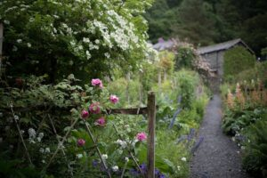 le jardin d'une maison